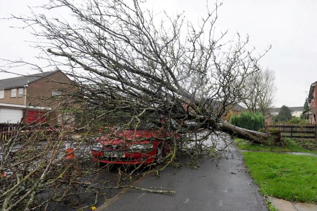 Gwent braced as storm winds to peak on Sunday